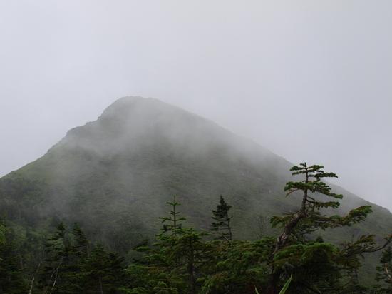 2009 08 09笠が岳.jpg