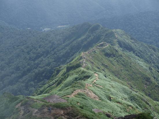 2009 08 16登山道4.jpg