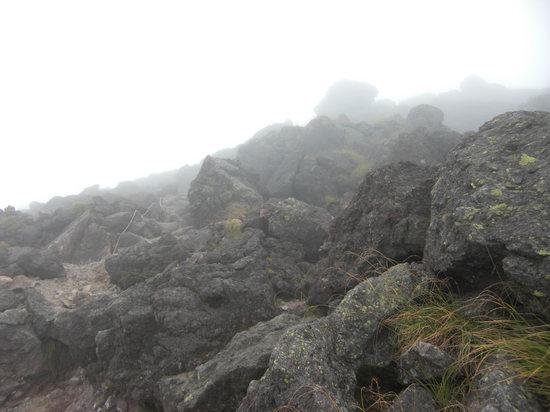 2009 08 29登山道.jpg