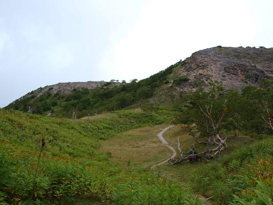 2009 09 06登山道4.jpg