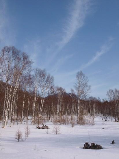 2010 02 01_6801.jpg