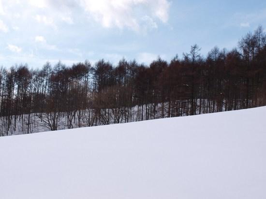 2010 02 11_6867.jpg