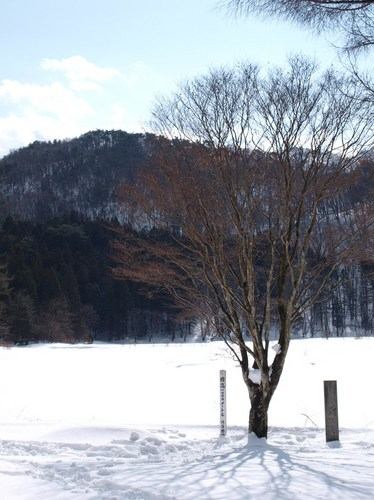 2010 02 11_6890 - コピー.jpg