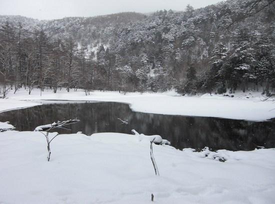 2010 02 13_6954.JPG
