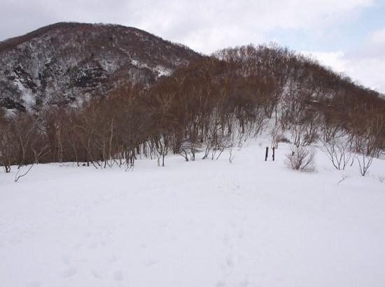 2010 03 14_7114.jpg